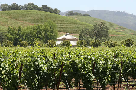 amador wine country inns
