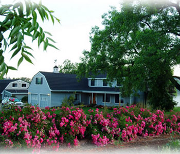 sutter creek lodging - amador harvest inn, plymouth